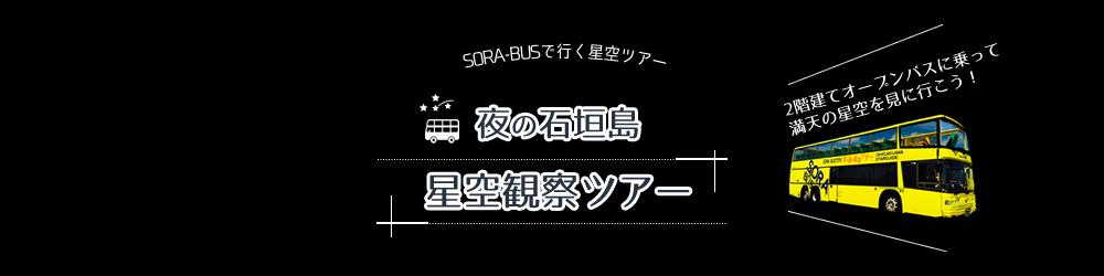 夜の石垣島星空観察ツアー